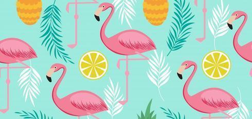 Bunte Flamingo Geschenke